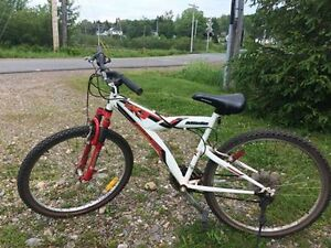 Miele mountain bike for sale