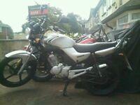 Yamaha ybr 125 58 plate