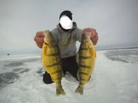 Ice fishing charters lake simcoe