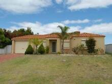 4 Room 2 Bath room house in  Kenwick WA for Rent Kenwick Gosnells Area Preview
