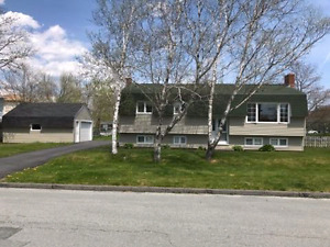 3+1 Split Entry home for sale in Timberlea.
