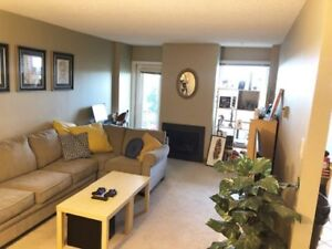 Spacious Pet Friendly 1 Bedroom Apartment - Wellington Crescent