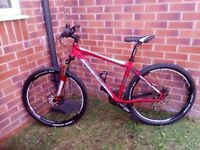 mens diamondback mountain bike