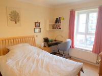 1 bedroom in (Room 3) (HOUSE SHARE) Cherry Garden Street, Bermondsey, SE16