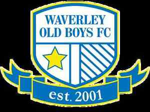 Men's Soccer Players Wanted - Waverley Old Boys Waverley Eastern Suburbs Preview