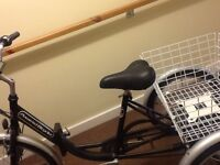 Thee wheel Electric Bicycle