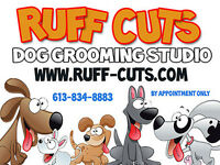 Ruff Cuts Dog Grooming Studio