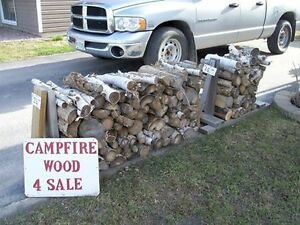 Campfire Wood For Sale