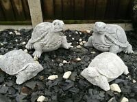 Lovely new tortoise statue/ornament for the garden