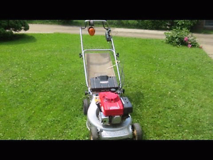 Local Lawnmowing service Blacktown Blacktown Area Preview