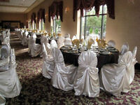 $3.99 Satin Chair Covers