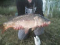 Private fishing lake stocked with Carp. 1 Acre approx.