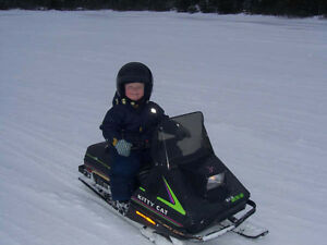 Arctic Cat Kitty Cat Kijiji In Ontario Buy Sell