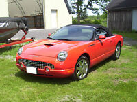 2002 Ford Thunderbird Convertible- Low KM's +Excellent Condition