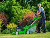 GRASS CUTTING LAWN CARE YARD CLEAN UPS