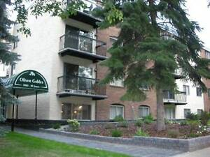 Fully Furnished Upscale 1 Bed Condo w/2 pkg stalls downtown