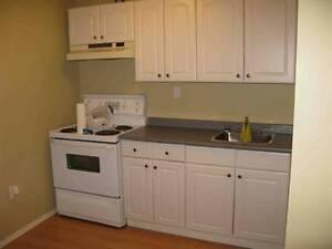 2 BEDROOM HOUSE WITH A TWO BEDROOM BACHELOR SUITE IN BASEMENT!!! Edmonton Edmonton Area image 8