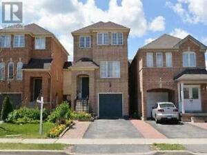3+1 Bed House for sale (Brampton) Prime Location