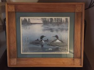 Nice picture of Loons for sale