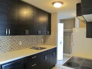 1 bedroom condo - 106 Ave and 111 St