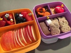 Tupperware Lunch box set  (Brand new) Murarrie Brisbane South East Preview