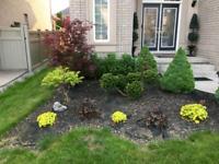 Lawn/outdoor Maintenance