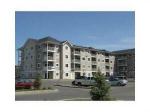 Stony Plain 2 bed 2 bath, $500 off last month