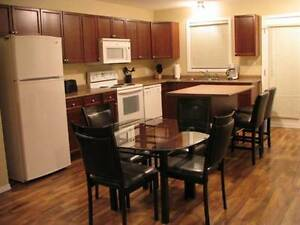 Spacious New Townhouse For Rent