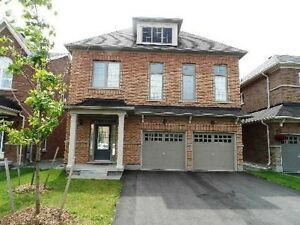 4 bedroom detached house for lease in scott Milton