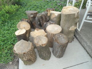 17 logs for $5
