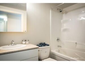 November 1st - Modern 1 Bedroom in St Boniface