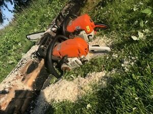 Tree Service,Firewood services & Chainsaw work and lawn service