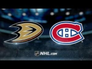Anaheim Duck -vs- Canadiens__2x Gris 331-C__125$/paire !!