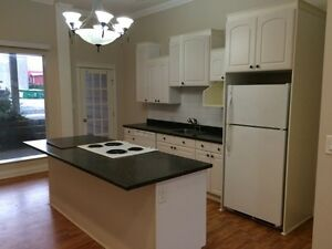Downtown Ladysmith Apartment for rent