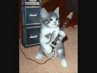 Alice's Guitar Tuition