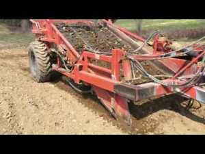Want to rent: Rock picker or some form of screener