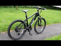 Horizon electric mountain bike