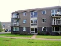 Cliffe Gardens, 1 Bed Flat To Let