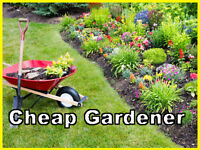 Cheap Garden maintenance services - cut gras, paving, turfing, landscaping, decing!!! Cheap!! Bham
