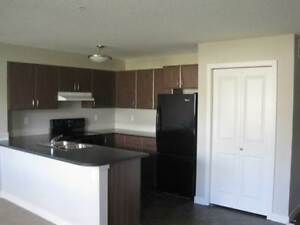 Pine Manor - 2 Bedroom Apartment for Rent