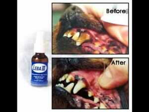 NEW bottle of Leba III plaque & tartar remover dogs cats puppies