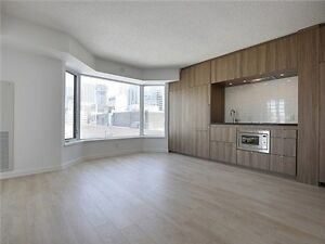 Beautiful One Bedroom Condo in Yorkville