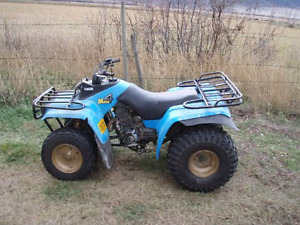 Looking for an atv to fix up and ride