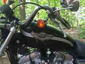Screaming Eagle Harley Davidson