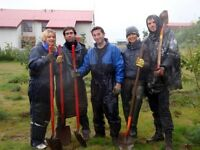 Explore traditional farming practices in South Iceland