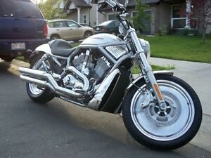 Harley Davidson Low Km Anodized V Rod FINANCING AVAILABLE
