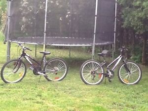3 Year Old Bikes For Sale