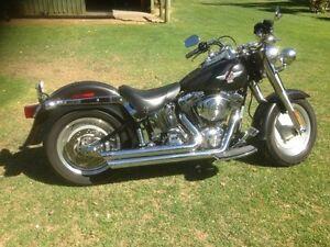 Harley Davidson Fatboy Gosnells Gosnells Area Preview
