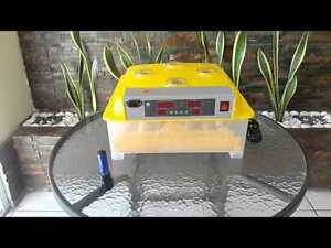 Egg Incubator with Automatic Egg Tipper - Holds 48 eggs