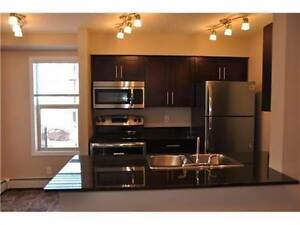 1025 Sqft Condo Nearby Wallmart on sharing basis.